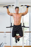 Shirtless male body builder doing pull ups. At the gym Stock Images