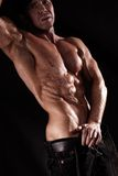 Muscular male torso Stock Images