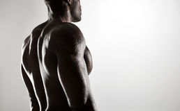 Shirtless male model with muscular back royalty free stock images