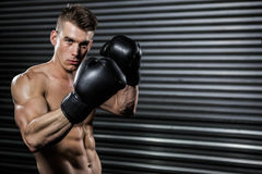 Shirtless man with boxing gloves Stock Image