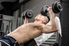 Shirtless man lifting heavy dumbbells on bench Royalty Free Stock Photos