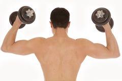 Shirtless Man Weights Up Back Stock Photo