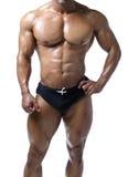 Shirtless manlig kroppsbyggare, egentligen muskulös kropp Royaltyfri Foto