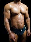 Shirtless manlig kroppsbyggare i stammar, egentligen muskulös kropp Royaltyfri Bild