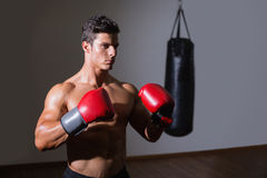 Shirtless muscular boxer in defensive stance in health club Stock Photography