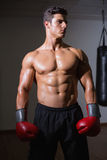 Shirtless muscular boxer in health club Royalty Free Stock Photo