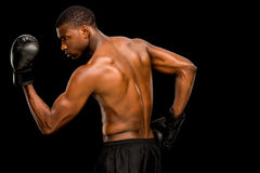 Shirtless muscular boxer. Posing over black background Royalty Free Stock Image