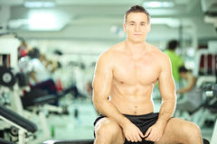 Shirtless muscular man posing in fitness club Stock Images