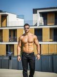 Shirtless muskler för kroppsbyggarevisningtorso, abs Arkivbilder