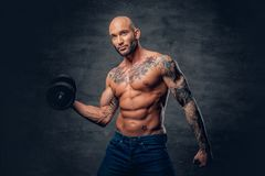 Shirtless shaved head, muscular male with tattoos on his chest a. Brutal shirtless shaved head, muscular male with tattoos on his chest and arms holds dumbbell royalty free stock image