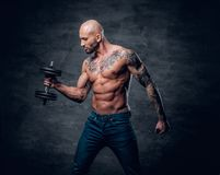 Shirtless shaved head, muscular male with tattoos on his chest a. Brutal shirtless shaved head, muscular male with tattoos on his chest and arms holds dumbbell royalty free stock photos
