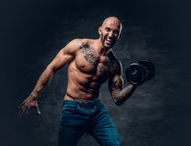Shirtless shaved head, muscular male with tattoos on his chest a. Brutal shirtless shaved head, muscular male with tattoos on his chest and arms holds dumbbell stock photography