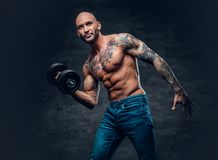 Shirtless shaved head, muscular male with tattoos on his chest a. Brutal shirtless shaved head, muscular male with tattoos on his chest and arms holds dumbbell royalty free stock images