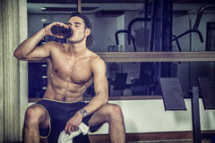 Shirtless young man drinking protein shake in gym. Attractive athletic shirtless young man drinking protein shake from blender in gym while looking at camera Royalty Free Stock Image