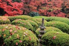 Shisen从事园艺 库存照片