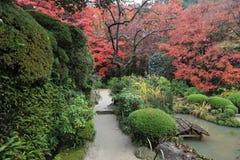 Shisen从事园艺 免版税库存照片