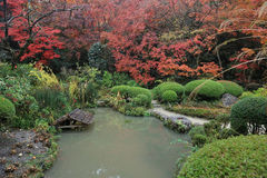 Shisen-cultive un huerto de temporada de otoño fotografía de archivo