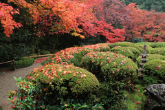 SHISEN-DO,京都,日本 库存图片