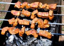 shish del kebab Immagini Stock