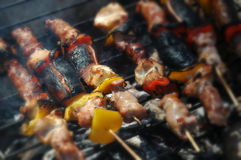Shish kababs on the beach. Beach BBQ Shish kabobs over a pit fire royalty free stock photography