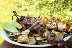 Shish kabobs Stock Images