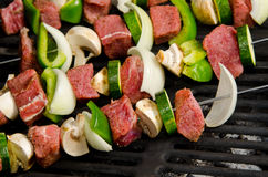 Shish Kabobs on the Grill Royalty Free Stock Photo