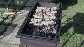 Shish kebab από το κοτόπουλο στο σχάρα-1 απόθεμα βίντεο