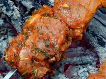 Shish kebab από το χοιρινό κρέας στους κόκκινους άνθρακες στοκ φωτογραφίες με δικαίωμα ελεύθερης χρήσης