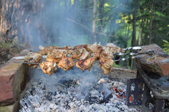 Shish kebab στα οβελίδια Στοκ φωτογραφία με δικαίωμα ελεύθερης χρήσης