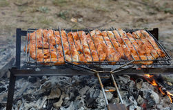 Shish kebab Royalty Free Stock Photography