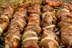 Shish kebab Stockfoto
