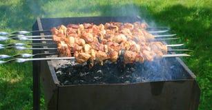Shish kebab Royalty-vrije Stock Foto
