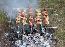 Shish kebab. On skewers and hot coals Royalty Free Stock Photos