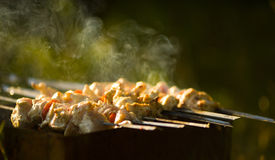 Shish kebab. In process of cooking Royalty Free Stock Photo