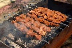 Shish kebab зажарено на меднике стоковое изображение rf