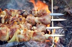 Shish kebab. On skewers and hot coals Stock Image