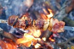 Shish kebab. On skewers and hot coal Royalty Free Stock Photo