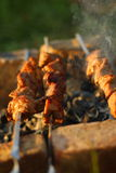 Shish kebab Royalty-vrije Stock Afbeeldingen