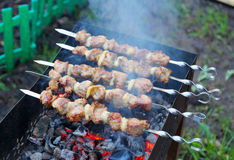 Shish kebab Royalty Free Stock Image