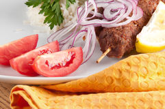 Shish kebab. With rice onions Royalty Free Stock Photos