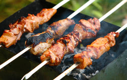 Shish kebab. Cooking shish kebab on a charcoal Royalty Free Stock Photos