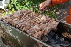 Shish kebab Zdjęcie Stock