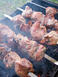 Shish kebab. Preparation on a brazier. Outdoor picnic. Close up Royalty Free Stock Photo