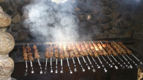 Shish kebab Obrazy Royalty Free