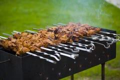 Shish kebab auf Haushaltspicknick stockbilder