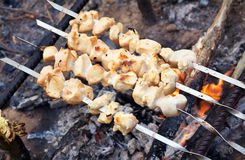 Shish kebab is baked over a fire with smoke. Camping Stock Image