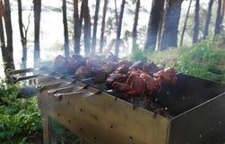 Shish kebab barbecue on  nature. Royalty Free Stock Photography