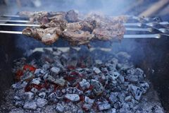 Shish kebab on coals. Appetizing meat on the coals Stock Photo