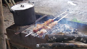 Shish kebab is cooked on the grill in the forest stock video