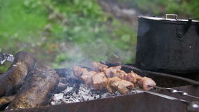 Shish kebab is cooked on the grill in the forest. Slow motion stock video footage